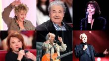 A plus de 80 ans, ils sont encore actifs sur scène. Annie Cordy, Pierre Perret, Juliette Gréco, Régine, Hugues Aufray, Charles Aznavour